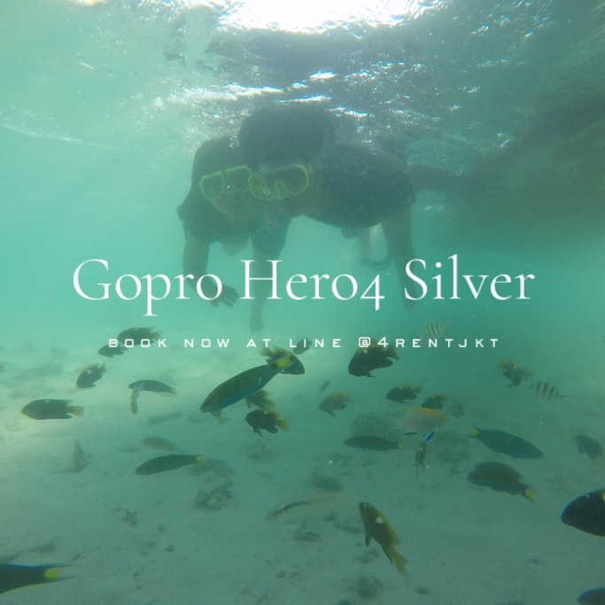 GoPro Hero4 Silver | Action Camera for Underwater / Sky Diving